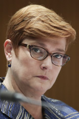"""Defence Minister Marise Payne says the allegations are being """"thoroughly examined""""."""