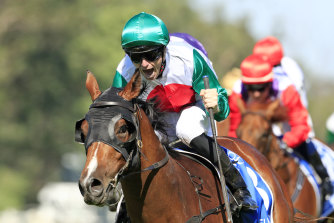 Castelvecchio is among the hopes for Saturday's Randwick Guineas on a strong program at headquarters.