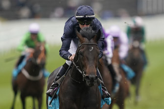 Sir Dragonet's victory in the Chester Vase Stakes last year.