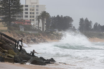 Another big swell is expected early next week to bring large waves to the NSW coast, including to the Collaroy-Narrabeen strip.