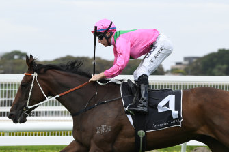 Tommy Berry and Amangiri score at Randwick last year.  The pair reunite at Rosehill on Saturday.