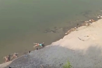 A still from a video showing bodies washing up on the banks of the Ganges last week.