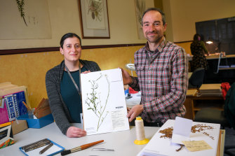 Database officer Rita Macheda and botanist Andre Messina with the millionth specimen to be catalogued at the herbarium.