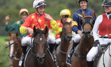 Better on track: Rosehill bookmakers are set to bet the best price about Golden Slipper favourite Cosmic Force.