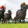 Deafening silence can't dim excitement of Cox Plate