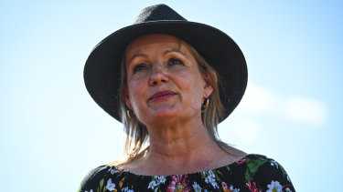 Federal Environment Minister Sussan Ley.