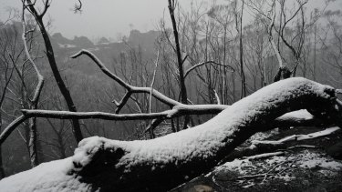 Snow falls in the Blue Mountains.