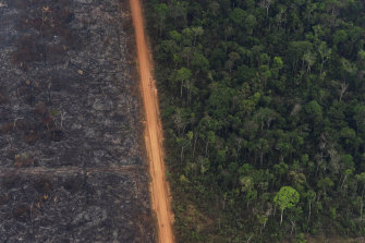 A lush forest sits next to a field of charred trees in Vila Nova Samuel, Brazil, on August 27. Fires have swept through the Amazon this year, adding to global concerns about deforestation.