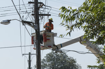 An Ausgrid worker in Killara work to repair power lines on Friday.