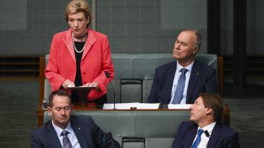 Queensland LNP MP Jane Prentice delivers her valedictory speech.