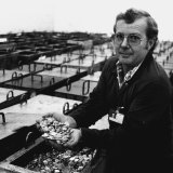 Reg Ree, leading hand at The Royal Australian Mint, Canberra,  displays dollar coins from one of the numerous containers of finished coins in the cashier vault. May 25, 1984.