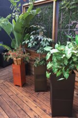 James Omni's planter box speakers.