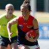 Daisy Pearce shows class in comeback, Bulldogs captain injured
