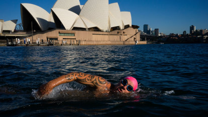 Sydney to come full circle with plans for swimmers to dip their toes back in the harbour