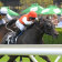 Glen Boss drives Moton's Fork through to win the Christmas Cup last month.