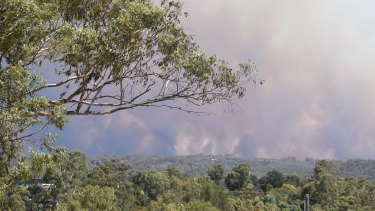 The Tingha fire, pictured on Tuesday, has burnt more than 5600 hectares.