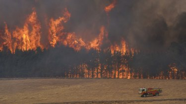 Two fire zones came together near the southern NSW town of Tooma to form a mega-fire in January.
