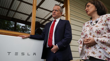 Opposition Leader Bill Shorten, pictured here with Victorian state Energy Minister Lily D'Ambrosio, has proposed a massive boost for household batteries.