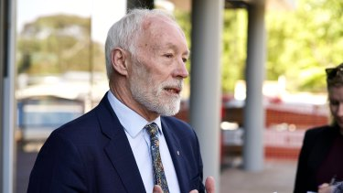 Professor Patrick McGorry said further action is needed ahead of a royal commission.