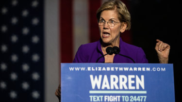 Senator Elizabeth Warren has called for Facebook, as well as Google and Amazon, to be broken up.