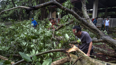 Residents clear fallen trees in Lipa town, Batangas province, Philippines, during the onslaught of Typhoon Kammuri.