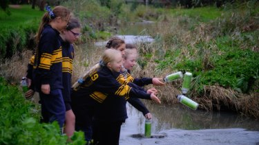 Students throw bottles into a creek at Vermont.