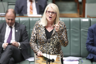 Home Affairs Minister Karen Andrews says the escalating wave of cyber attacks needs to be countered.