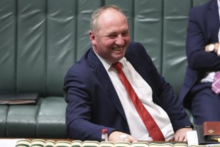 Barnaby Joyce, having returned as Nationals leader and deputy Prime Minsiter, pictured in question time this week.