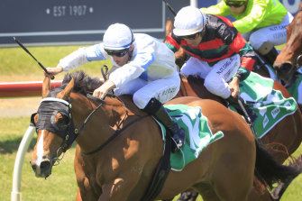 King's Trust races to a fairytale win in the Highway Handicap at Newcastle last Saturday.