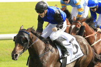 Josh Parr's perfect ride helped Shadow Hero to victory in the Randwick Guineas.