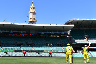 Australian openers David Warner and Aaron Finch walk out to bat at an empty SCG on Friday against New Zealand.
