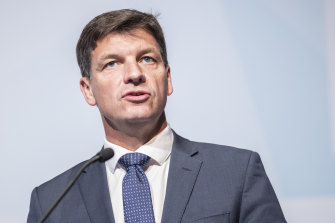 Angus Taylor insisted the government's $3.5 billion climate fund would achieve the carbon target.