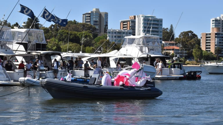 Floats bobbed near the yachts, as black swans swam past hurriedly.