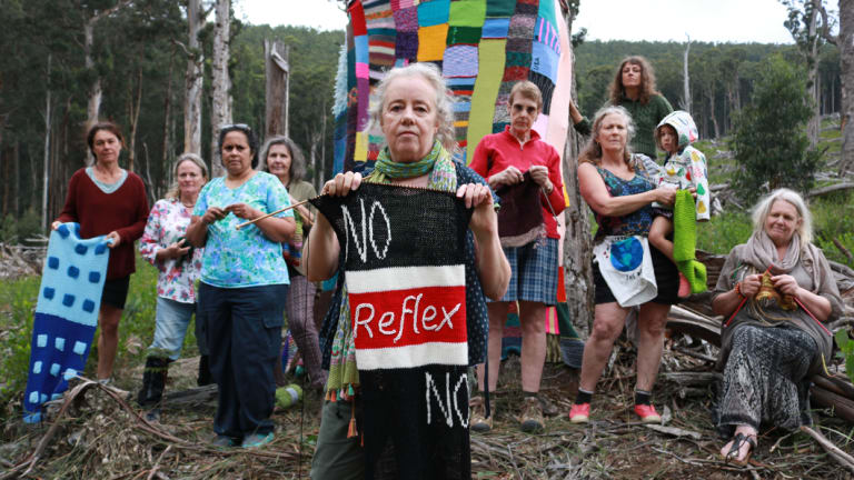 Karena Goldfinch, centre with St Kilda colours, and her fellow Knitting Nannas in Toolangi Forest, with trees saved after campaigning by ecologists and environmental groups.