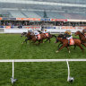MRC concedes defeat on Caulfield Cup crowds