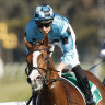 Temperature rules Anders out of the Moir Stakes