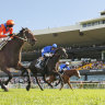 'He is one of racing's best kept secrets': Parker has another good one