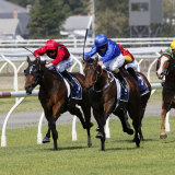 Asiago hits the frnt in the Spring Stakes at Newcastle.