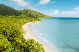 The rainforest almost kisses the Barrier Reef at Cape Tribulation.
