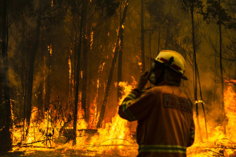 A firefighter attempts to protect a property on Tallow Wood Road from the Currowan fire.