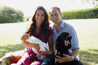 The Duchess of Cambridge and  Duke of Cambridge pose with Prince George and Lupo in 2013.