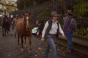 Colleen O'Brien, who runs Brumby Junction – a sanctuary solely for brumbies, two hours west of Melbourne in Glenlogie – at a Save The Brumby protest at Parliment House in Melbourne.