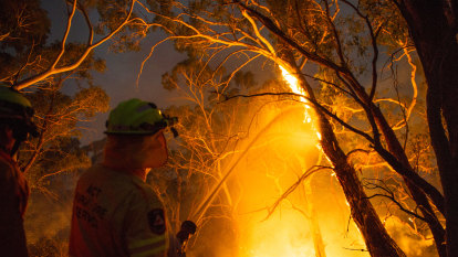 As a firefighter, I'm used to hearing an alarm and responding. The Morrison government has to do the same