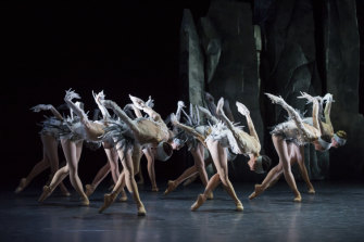 LAC reimagines the classic ballet Swan Lake.