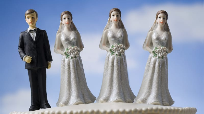 monogamous vs polygamous families I come from a christian family with a mix of atheists, mormons, and baptists illegal polygamy or serial monogamy won't change anything economically.