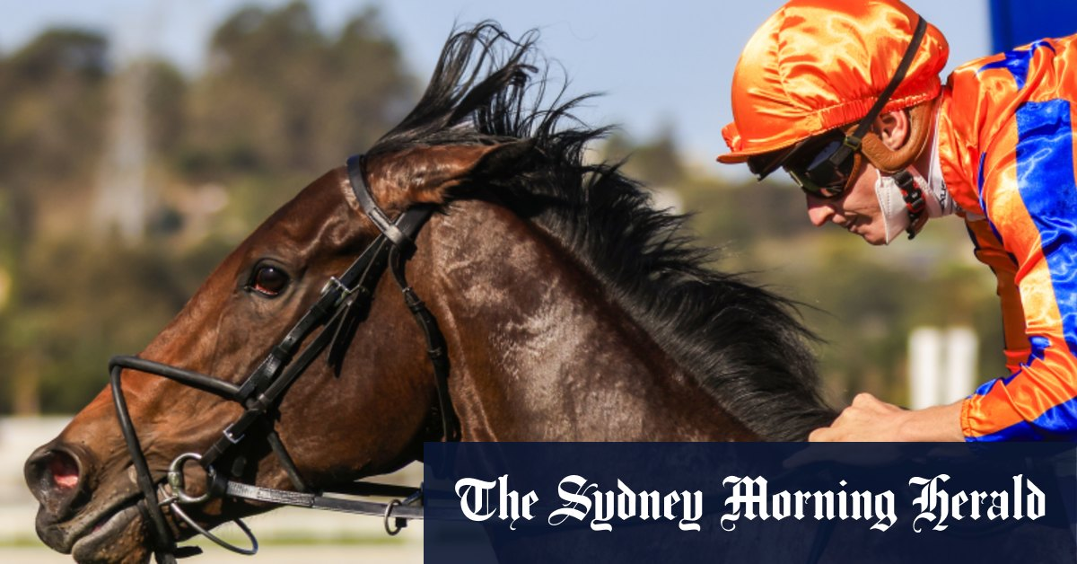 'One of the better bets of the day': Punters stick with Entriviere