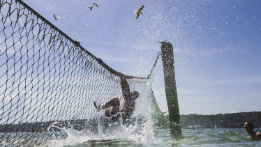 Tourists cool off outside the shark net at Nielson Park, which is one of Sydney's harbour beaches with the cleanest water.