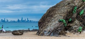 'Sentinels' on the rocks at Currumbin Alley on the Gold Coast