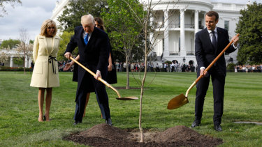 US President Donald Trump and French President Emmanuel Macron planted the tree on the south lawn of the White House on April 23, 2018.