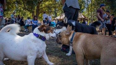 Australia's pet industry is worth $3 billion.